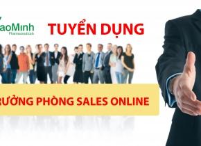 Bảo Minh tuyển trưởng phòng sales online
